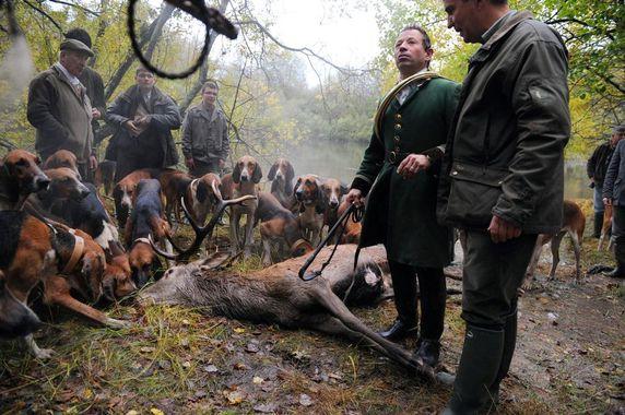 Des militants anti-chasse s'interposent pendant la chasse à courre