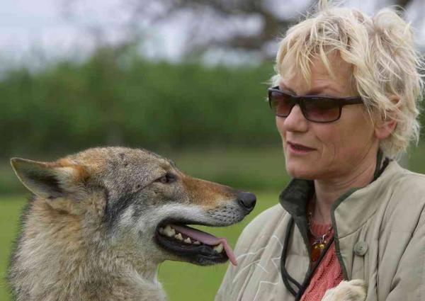 La condamnation de l'éleveuse de chiens-loups en France est maintenant définitive