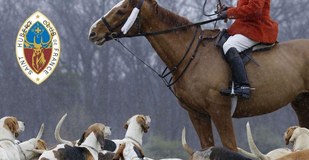 Flirt d'extrême-droite au plus vieux club de chasse de France