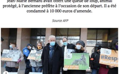 Affaire de la queue de loup : Jean-Marie BERNARD fait appel